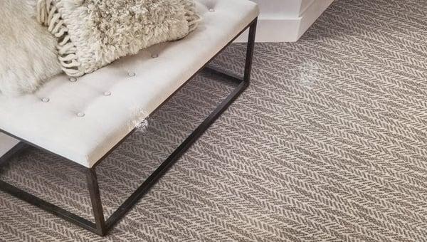 Regularly Vacuum Your Carpet