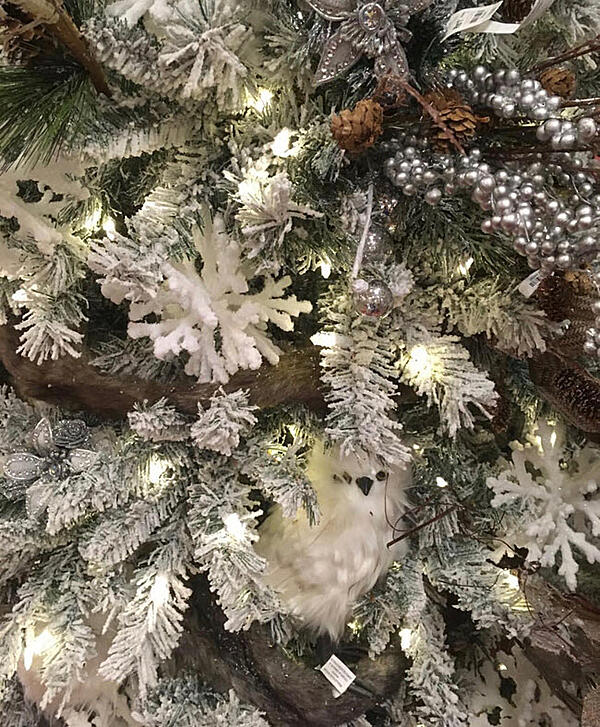 Don't forget the element of surprise. Snowflakes, flocking, pine cones and owls.
