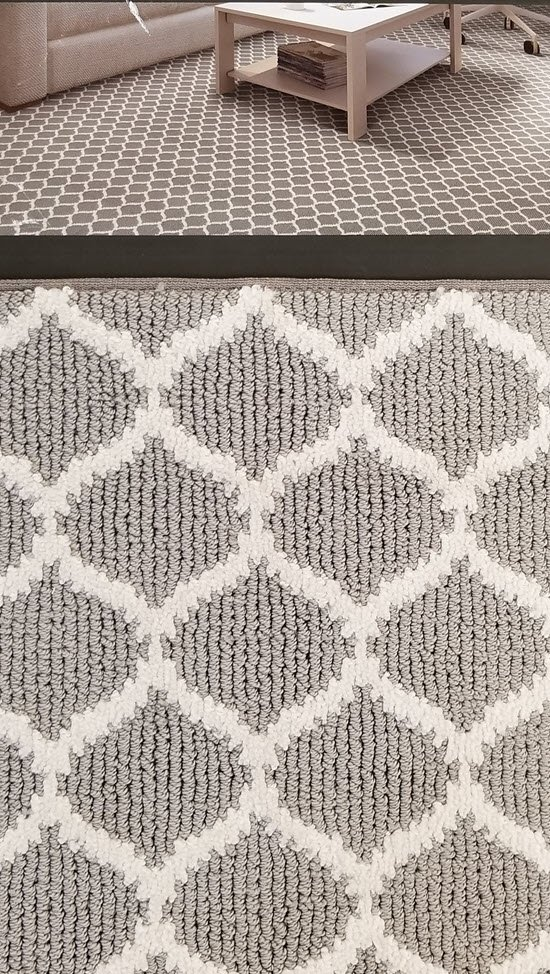 Stainmaster PetProtect Carpet at Floor Decor Design Center
