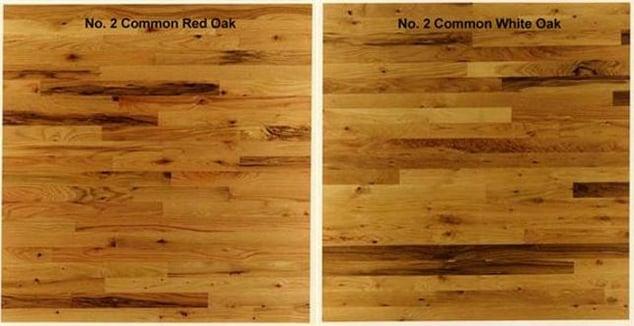 No. 1 Common Oak