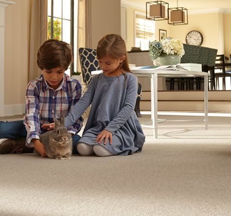 Guideline #4: Explore the Different Types of Carpet Styles Available