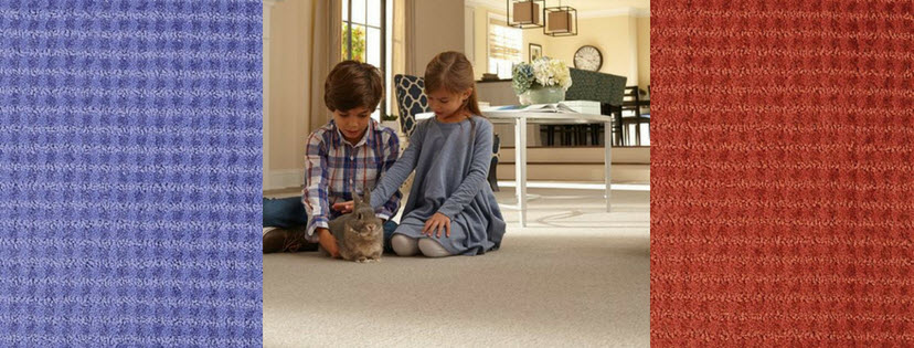 Buying Carpet? Here Are Our Top 5 Guidelines